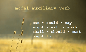 contoh kalimat modals